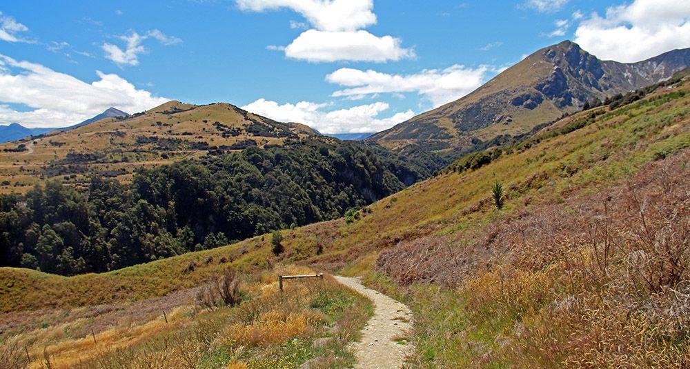 hiking trail, New Zealand