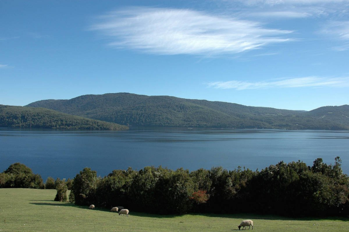 Lago Cucao in Chile, surrounded by green meadows