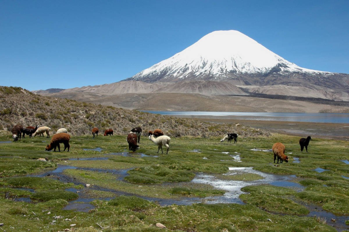 Lauca National Park in Chile offers high mountain peaks
