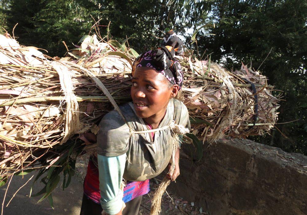Female wood collector in Addis Abeba, Ethiopia