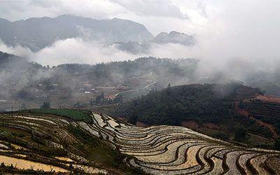 Trekking through the rice fields of Sapa