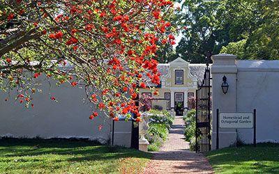 The wine region around Stellenbosch