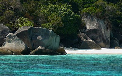Diving near the Similan Islands and Richelieu Rock