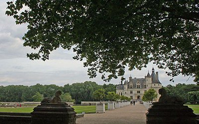 Castle and wine route along the Loire